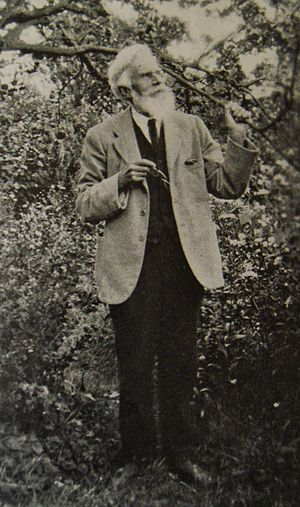 Havelock Ellis August 1927