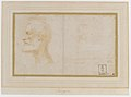 Head of a Bearded Man in Profile to Left, possibly the Portrait of the Poet Giorgio Anselmi (ca. 1459-1528), with Faint Sketch of a Skull-like Head MET DR271.jpg