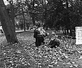 Herfstbladeren in het Vondelpark Amsterdam, Bestanddeelnr 906-7820.jpg