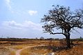 Hermosa de las rurales - panoramio.jpg