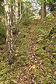 Herr Fossemøllens vandringsled opp Olteruddalen ved Grythengen på Toten.jpg