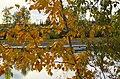Hidden rower (7987395630).jpg