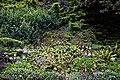 Highdown Gardens, Worthing, Chalk Pit Garden 1.jpg