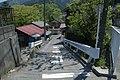Hikawa, Okutama, Nishitama District, Tokyo 198-0212, Japan - panoramio (3).jpg