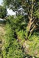 Hirlgraben-bjs130714-06.jpg