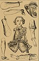 Histoire des jouets - ouvrage contenant 250 illustrations dans le texte et 100 gravures hors texte dont 50 planches coloriées à l'aquarelle (1902) (14596240718).jpg