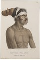 Homo sapiens - Aboriginal, Australië - 1700-1880 - Print - Iconographia Zoologica - Special Collections University of Amsterdam - UBA01 IZ19500015.tif