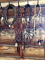 Horse bridles at Ninepipes Museum of Early Montana.JPG
