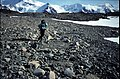 Horseshoe I Paul Thompson on rough ground 2.jpg