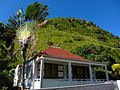 House with Fanned Palm (6549987603).jpg
