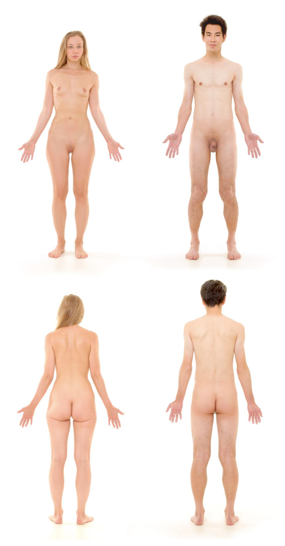Human Body 02