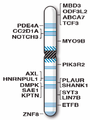 Human chromosome 19 with ASD genes from IJMS-16-06464.png