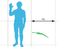 Hyphalosaurus scale mmartyniuk wiki.png