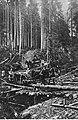II Brygada Legionów podczas walk w Karpatach (22-126-1).jpg