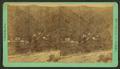 Idaho, Fall River, by Chamberlain, W. G. (William Gunnison).png