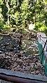 Ikogosi Warm water spring 13.jpg