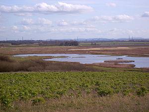 Burton Mere Wetlands - View over Inner Marsh Farm in 2007