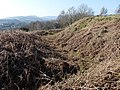Iron Age ditch and ramparts , Gaer Fort - geograph.org.uk - 2331276.jpg