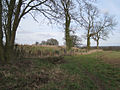 Iron Age earthwork, Beausale - geograph.org.uk - 1769623.jpg