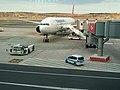 Istanbul Airport, Arnavutköy (P1090188).jpg