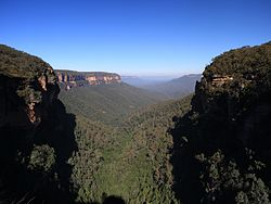 Jamison valley frm wentworth falls.jpg