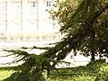 Jardines de Sabatini, rama y palacio, Madrid, España, 2015.JPG