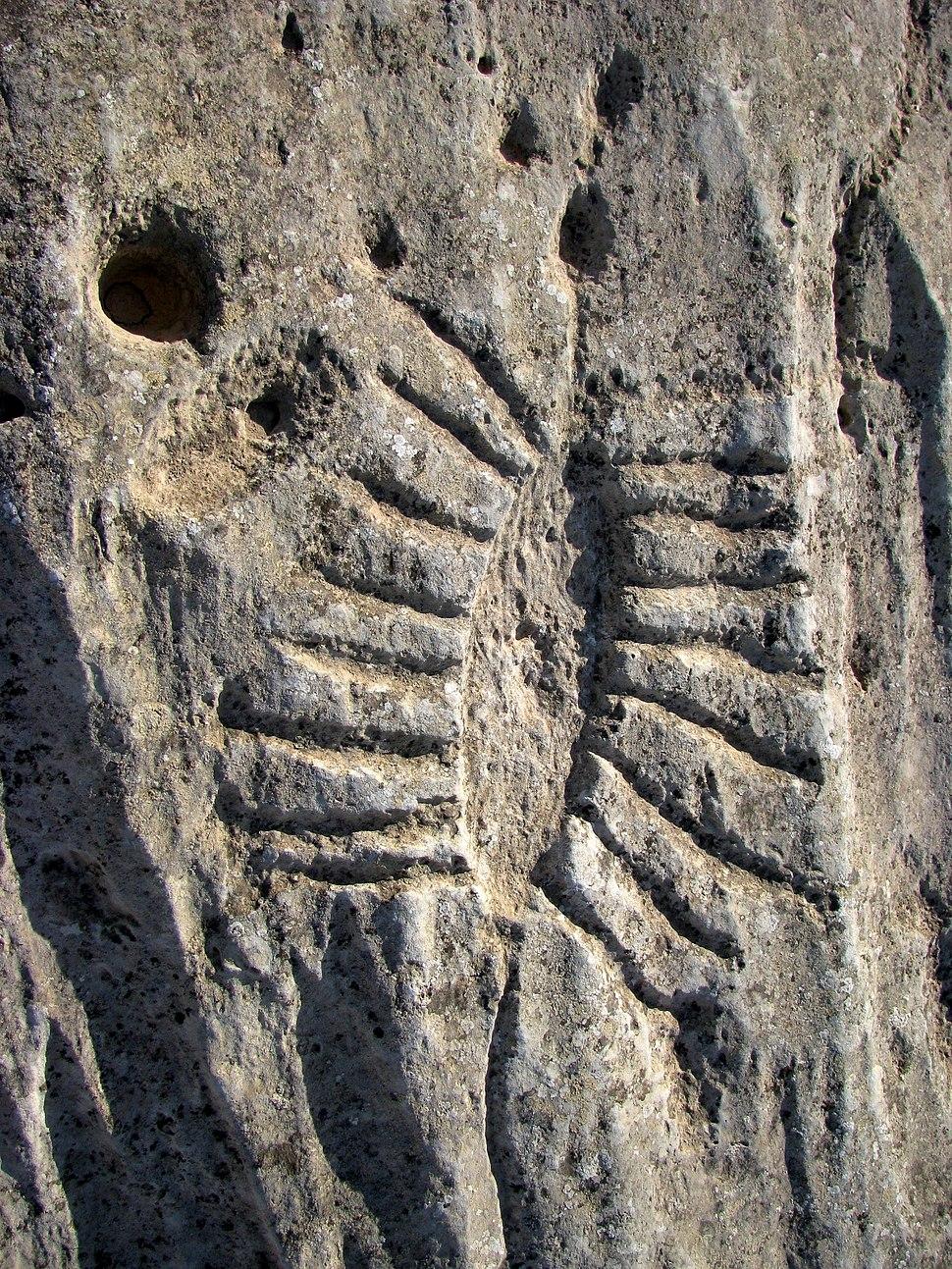 Jebel Jassassiyeh rock carvings