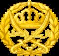 Jordancapinsignia2.png