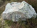 Just a stone with a lichen patch - geograph.org.uk - 413833.jpg