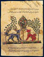 رسم من نسخة عربية لكتاب «كليلة ودمنة» تعود لسنة 1220م، يصوّر كلاً من «كَلِيلَة» و«دِمْنَة»، وهما اسمان أطلقا على اثنين من بنات آوى وقد ظهرا في عدد من قصص الكتاب