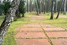 La photographie couleur montre le lieu actuel du massacre. Au milieu d'un bois de feuillus et sapins, au sous-bois d'herbe tondue rase, des dalles roses forment des ovales à l'endroit où furent creusées trois fosses.
