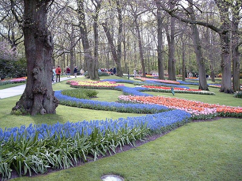 /**جمال الطبيعة في فصل الربيع**\ 800px-Keukenhof1.jpg