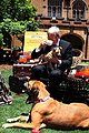 Kevin Rudd (Pic 2).jpg