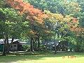 Khlong Nung, Khlong Luang District, Pathum Thani 12120, Thailand - panoramio (31).jpg
