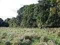 Kiblet Down - geograph.org.uk - 991351.jpg