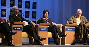 Michelle Guthrie - Michelle Guthrie (centre) speaking at the World Economic Forum Annual Meeting Davos 2007.