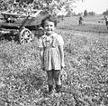 Kožarjeva najmlajša hči, Staro Apno 1964.jpg