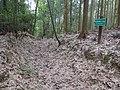 Koya Pilgrimage Routes-Mitanizaka 12.jpg