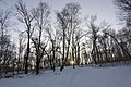 Kuchmin yar, Kiyev, Ukraine - panoramio (17).jpg