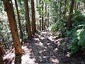 Kumano Kodo Kogumotorigoe World heritage29.JPG