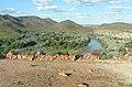 Kunene River.jpg