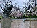 Kyoto, 桜, sakura, National Museum - panoramio.jpg