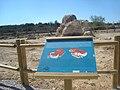 L'Hostalot-mansio Ildum (espacio de protección arqueológica).jpg