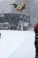 LG Snowboard FIS World Cup (5435321005).jpg