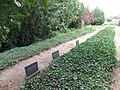 LL Bombenopfer Friedhof 2.JPG