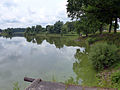 LSG Friedewald und Moritzburger Teichgebiet 03.JPG