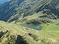 Lacul Buda - panoramio (1).jpg