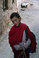 Ladakh (127455867).jpg