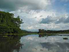 Lake Ravelobe, Ankarafantsika National Park, Madagascar (4026819249).jpg