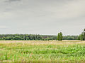 Landscape (14619045515).jpg